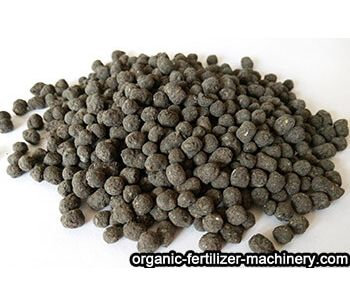 Difference between organic fertilizer and chemical fertilizer