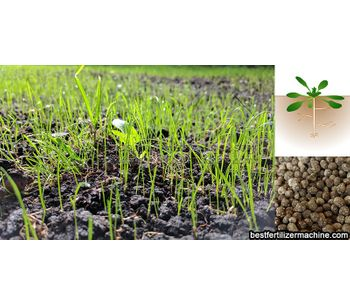 What is the bio organic fertilizer?