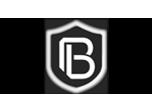 BRANS Measuring & Controlling Technology Co. Ltd