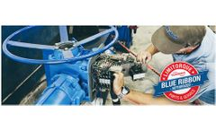 Flotech - Limitorque Actuator Blue Ribbon Repair Service