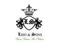 LISO & SONS - Model 900 GSM - Coir Geotextiles (Coir Mesh Matting)