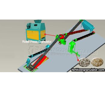 Annual Output 30,000 tons double roller granulator NPK fertilizer production process