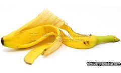 How to make banana peel into flower fertilizer