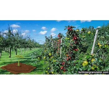 Reasons for the low content of organic matter in orchard soil