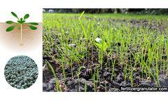 Development of fertilizer and advancement of granulating process