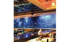 PG Acrylic - Square Aquarium Fish Tank