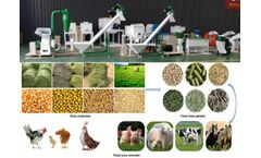 Use The Feed Processing Machinery Made Feed Into Pellets
