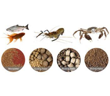 Best Fish Feed Pellet Extruder Machine Manufacturer