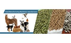 Poultry Feed Pelleting Process Of Feed Pellet Plant