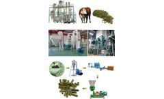 Ruminant Animal Feed Pellet Production Business Plan