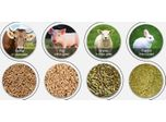How To Make Feed Pellets At Home