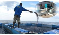Aquatic Feed Pellet Mill Is The Best Choice for Shrimp Farming