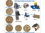 How Many Fish Feed Pellets to Feed Your Fish