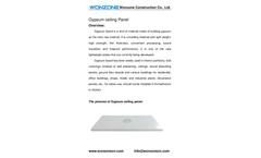 Wonzone - Clean Room Gypsum Ceiling Panel Brochure
