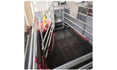 Chima-Asia - Combi- Farrowing Pen