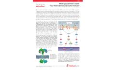 InvivoGen - Model TLR2 - Ligands Cells Brochure