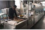 Microwave Sterilization Equipments