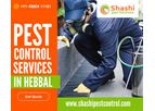 Shashi Pest Control - Pest Control Services in Hebbal