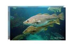 Underwater Robots for Aquatic Farming