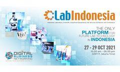 Lab Indonesia ICCAI HKI Webinar