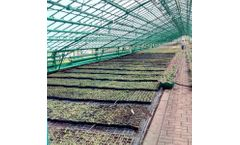Greenhouse Modernization Services