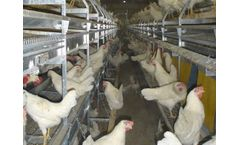 Salmet - Combi Barn Aviary System