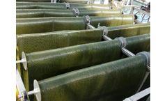 Gross-Wen - Revolving Algal Biofilm (RAB) Wastewater Treatment Process System