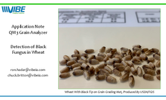 Grain Analyzer for Detection of Black Fungus in Wheat Brochure