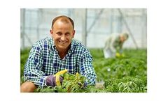 Humidification and evaporative cooling solutions for agricultural humidification systems sector