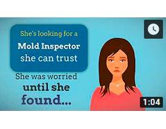 Murrieta's Trusted Mold Inspection Company