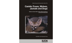 Canids: Foxes, Wolves, Jackals and Dogs: status survey and conservation action plan
