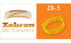 Zebron - Model ZB-5 - GC Columns
