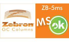 Zebron - Model ZB-5MS - Fused Silica GC Column