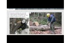 Chainsaw Safety Training Preview Video