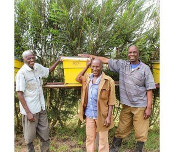 How Octaform's Founder is Helping Kenyan Villagers Through Beekeeping