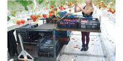 Strawberry Harvest Cart