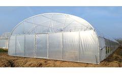 Greenhouse - Model 7677 - 30 x 30 x 4m Tunnel