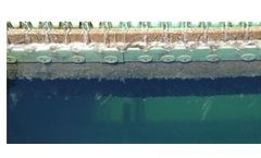 Bio-Hydrox for Treatment Plants