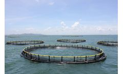 Water quality monitoring solutions for aquaculture industry