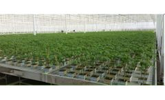 Horti-XS - Greenhouse Construction Services