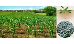 Application of microbial bacterial fertilizer in agricultural organic fertilizer production line