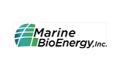 Disruptive supplies of affordable biomass feedstock grown in the open ocean marine