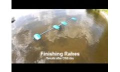 LAKEMAID 12`-24`-36` unit - Automatic Lake Weed and Silt Removal Video