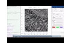 Matlab Control of Lumascope with Multichannel Live Video