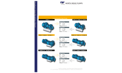 North Ridge - Model FIG180C - Close Coupled Internal Gear Pump with In-Line Flange Connections Brochure