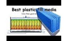 Film fill plastic media and attached biofilm growth