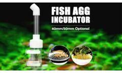 Aquarium Fish Egg Tumblers Hatchery Incubators | Cichlid Egg Incubator- Video