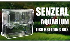 Vital Tool for Fish Breeding: Fish Isolation Box - Video