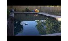 Dragonfly Floating Pool Cleaner Video