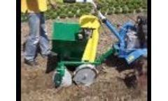 KSM-1 potato planter 1 - Video